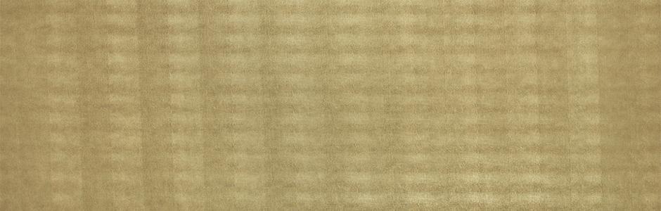 13478 Leguan Gold