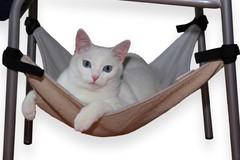 Гамак для кошки бежевый GK1BEZ
