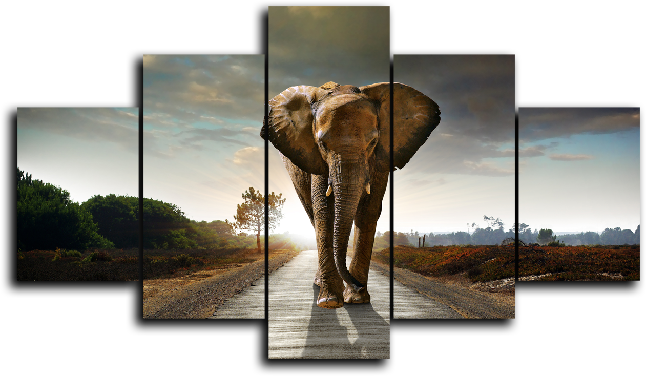 """Животные Модульная картина """"Слон идет"""" М940.png"""