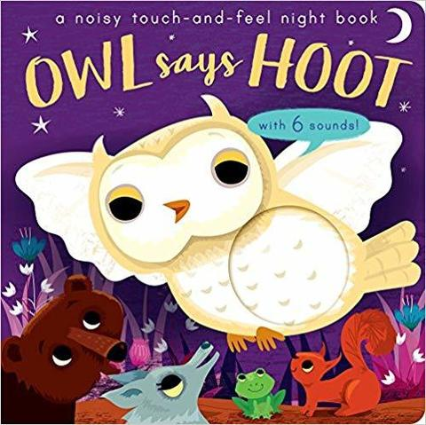 Owl Says Hoot : A noisy touch-and-feel night book