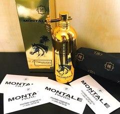 Montale Arabians