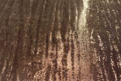 Бенгал коричневый