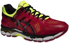 Мужские кроссовки для бега Asics Gel-Kayano 22 (T547N 2490) красные