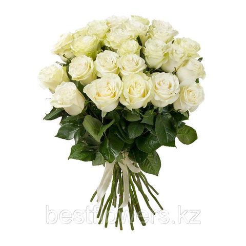 25 белых роз (Голландия)