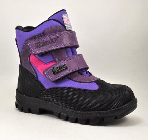 Ботинки утепленные Minicolor 2540-5