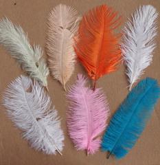 Перья страуса  декоративные 20-25 см. Уценка, категория 2. (выбрать цвет)