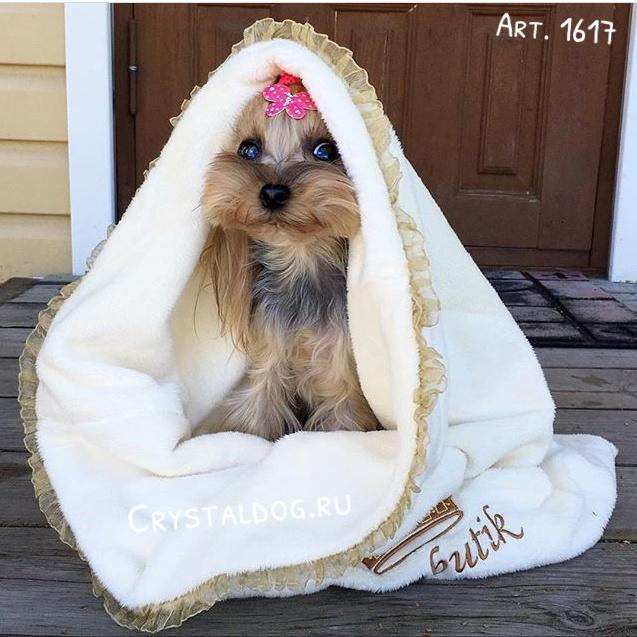 конверт для собак