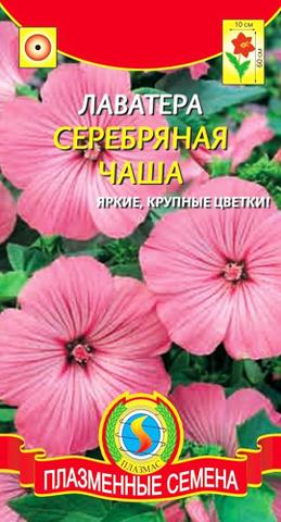 Семена Цветы Лаватера Серебряная чаша