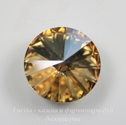1122 Rivoli Ювелирные стразы Сваровски Crystal Golden Shadow (SS47) 10,54-10,9 мм