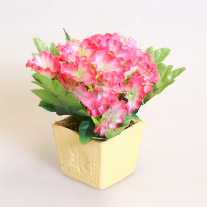 Цветок в горшке  бело-розовый 470487