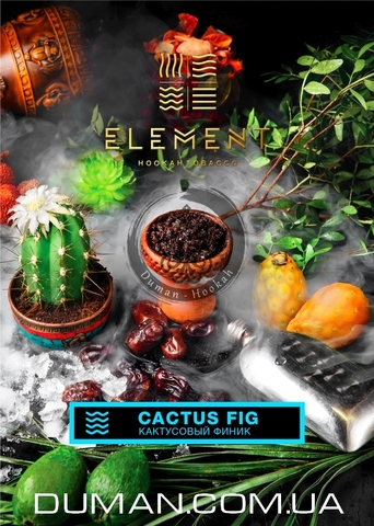 Табак Element Cactus Fig (Элемент Кактусовый Финик) |WATER