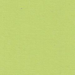 Простыня на резинке 160x200 Сaleffi Tinta Unito с бордюром мятная