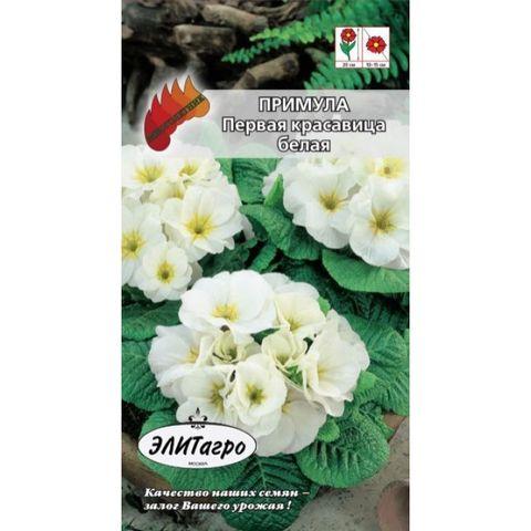 Семена Цветы Примула Первая красавица белая