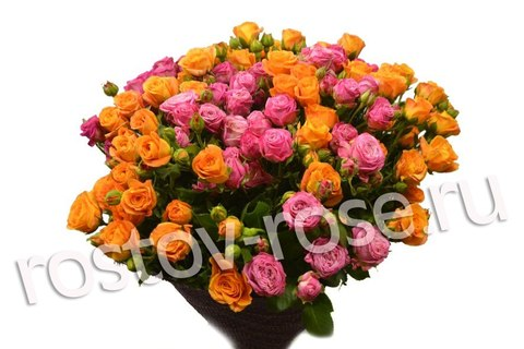 Букет кустовых роз Абеба и Леди Бомбастик