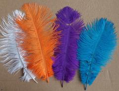 Перья страуса  декоративные 25-30 см. Уценка, категория 2  (цена за 1 шт.) (выбрать цвет)