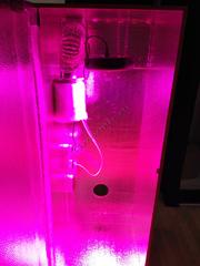 Купить гроубокс под ключ с LED освещением