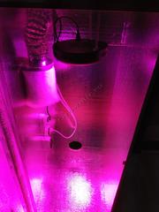 Гроубокс стелс с LED освещением с размерами 160 60 60