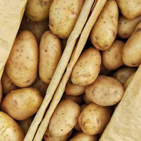 Фотография Картофель мытый (Азербайджан) / 1 кг купить в магазине Афлора