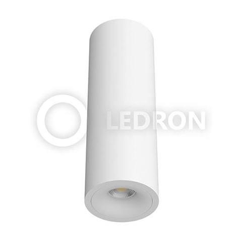 LeDron MJ 1027GW White 300 фото
