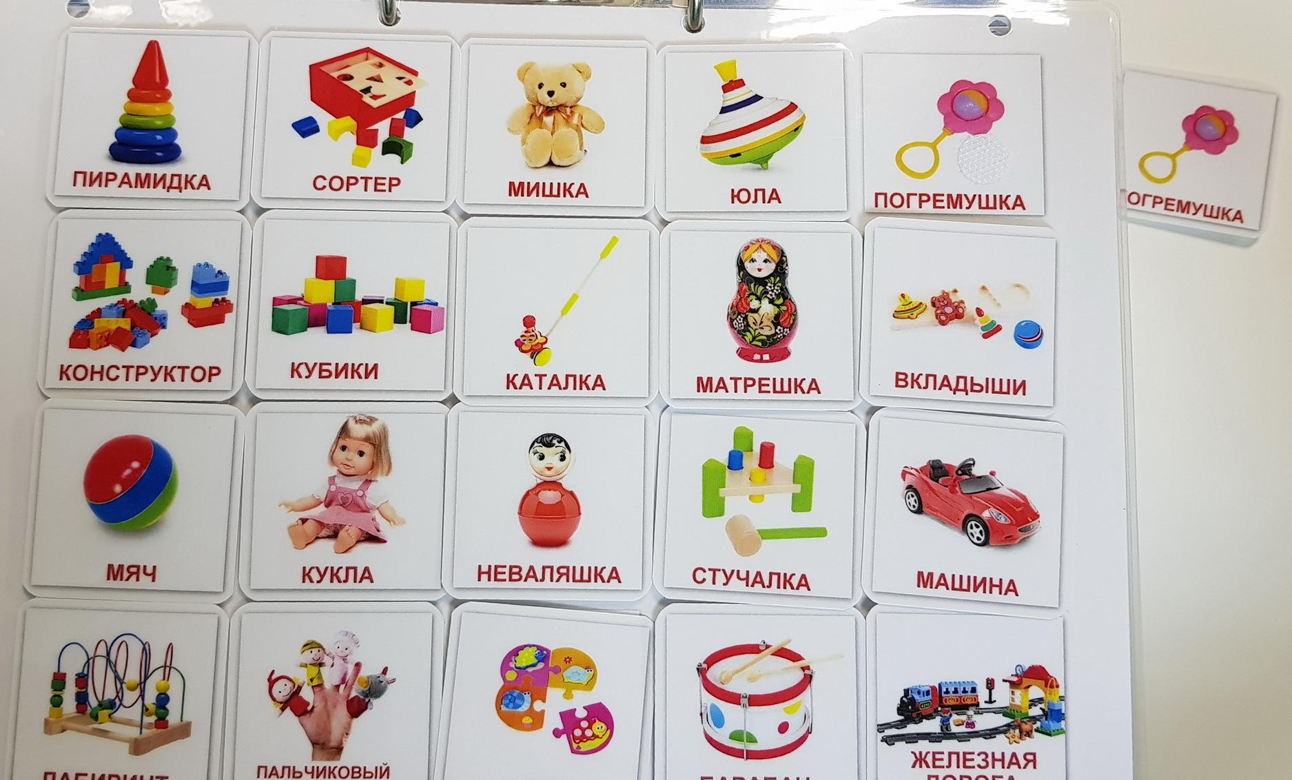 Мои игрушки. Двадцать карточек. Развивающие пособия на липучках Frenchoponcho (Френчопончо)