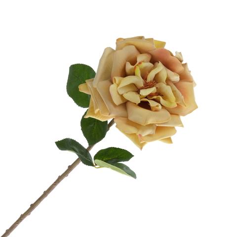 Роза  персиковая 48 см