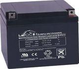 Аккумулятор LEOCH DJW12-24 ( 12V 24Ah / 12В 24Ач ) - фотография