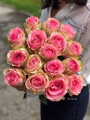 17 эквадорских роз #17731