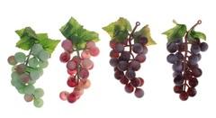 Ветка винограда средняя 12 см, 22 ягоды. Глянцевый.