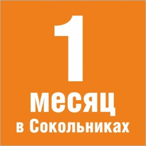 https://static-eu.insales.ru/images/products/1/588/79774284/site_orange_sekcii_new3.jpg