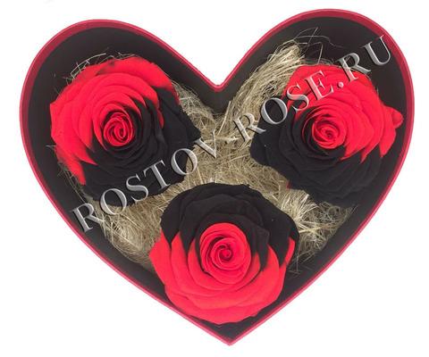 Розы стабилизированные - композиция Дыхание любви