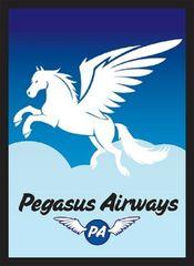 Legion Supplies - Pegasus Air Протекторы 50 штук