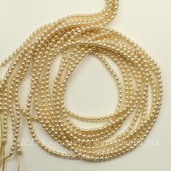 5810 Хрустальный жемчуг Сваровски Crystal Light Gold круглый 4 мм, 10 штук
