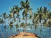 Серф-тур и путешествия по Шри Ланке