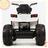 Квадроцикл Grizzly T001MP 4x4
