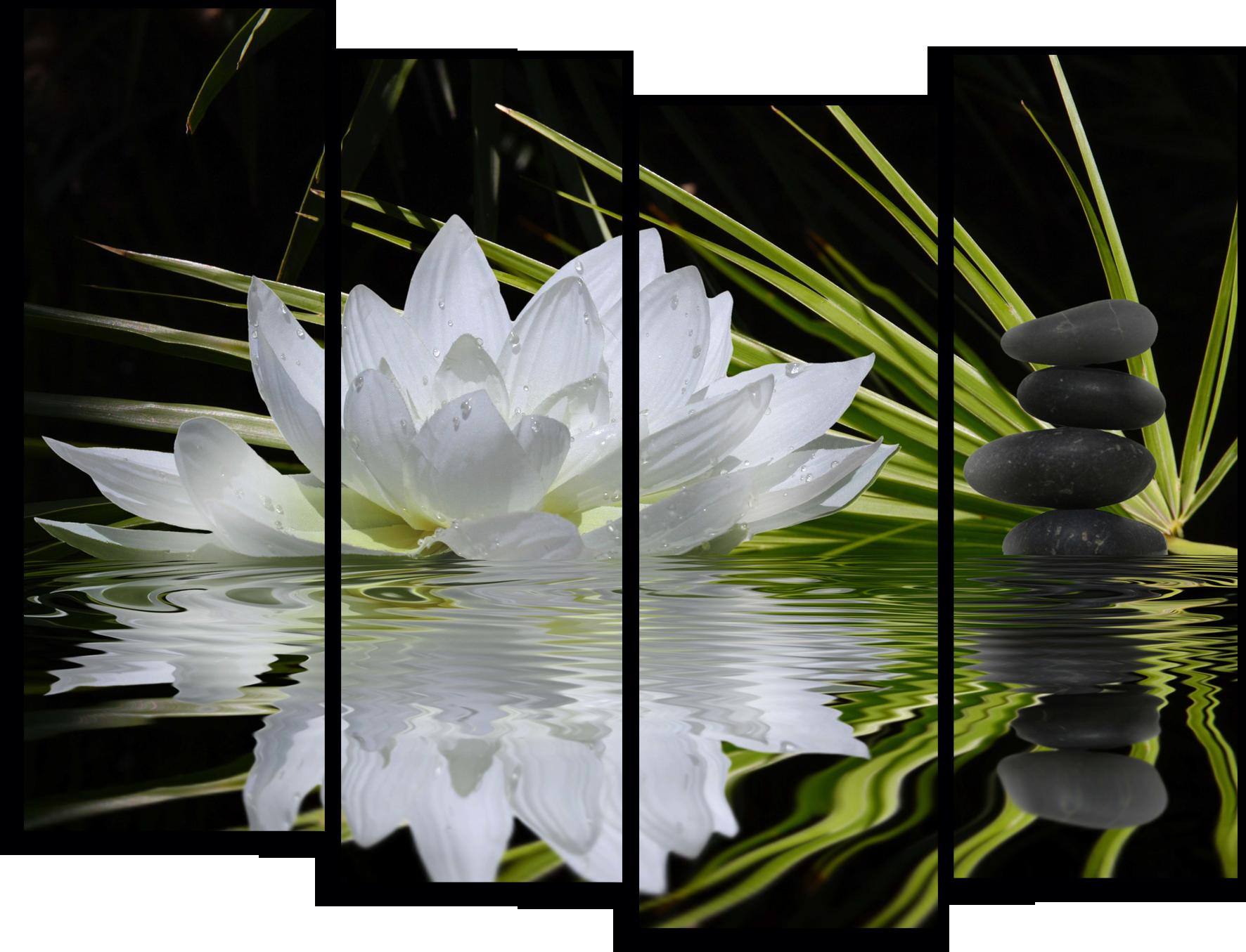 "Цветы Модульная картина ""Лотос"" М771.png"