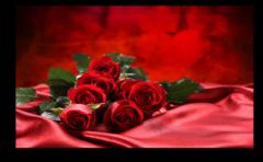 """Постер """"Кровавые розы"""""""