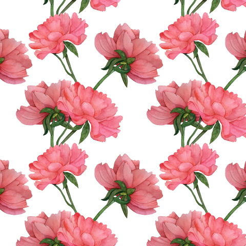 Seamless pattern of beautiful pink peonies on a white background.