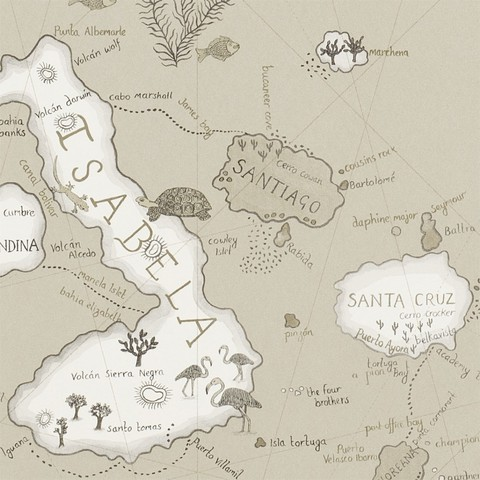 Обои Sanderson Voyage of Discovery 213365, интернет магазин Волео