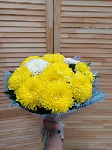 11 одноголовых хризантем #18631
