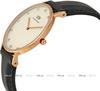 Купить Наручные часы Daniel Wellington 0951DW по доступной цене