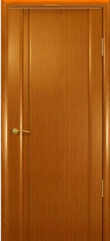 Дверь Океан Шторм-1 , цвет анегри, глухая