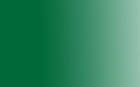 Акрил Amsterdam Expert, 75мл, №619 Зеленый устойчивый