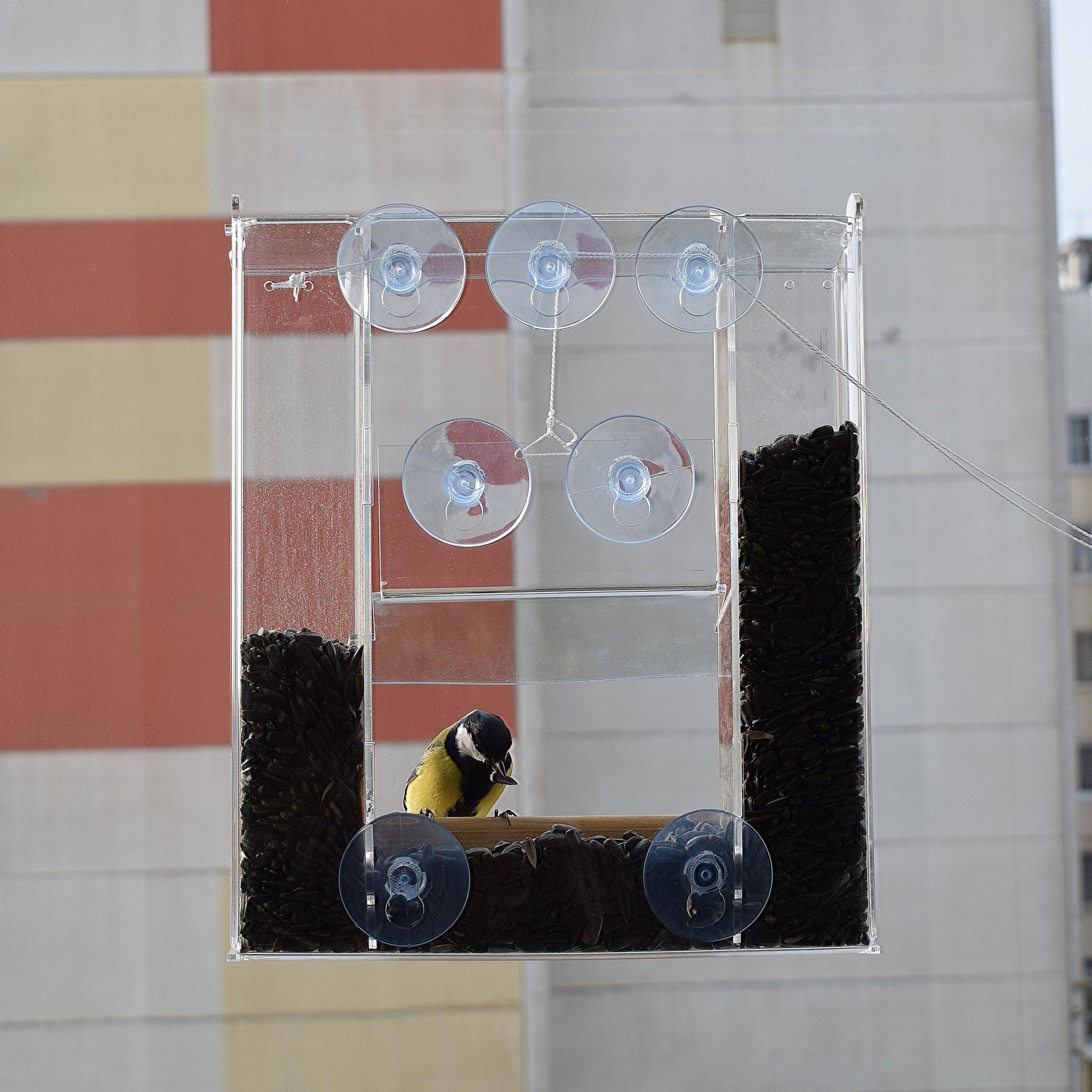 Кормушка на окно Эверест вместе со 100% защитой от голубей