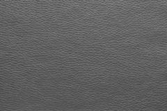 Искусственная кожа Terra (Терра) TM-01