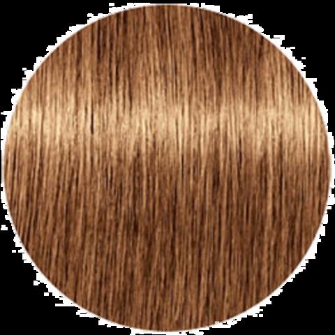 Schwarzkopf Igora Royal Disheveled Nudes 8-176 (Светлый русый сандрэ медно-шоколадный) - Краска для волос