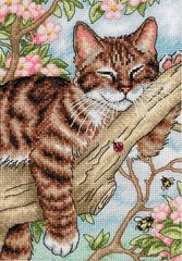 DIMENSIONS Спящий котёнок (Napping Kitten)