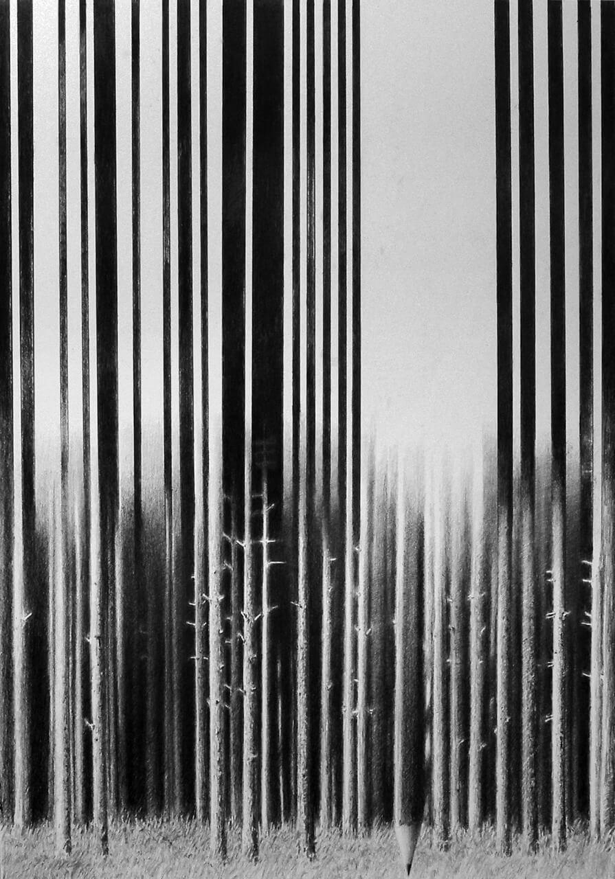 Деловая древесина