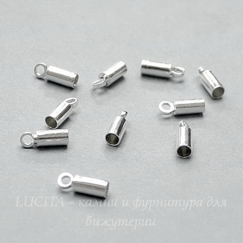 Концевик для шнура 2,2 мм, 8х3 мм (цвет - серебро), 10 штук