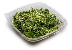 Салатный микс микрозелень № 3, 80г