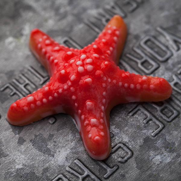 Мыло Морская звезда. Пластиковая форма